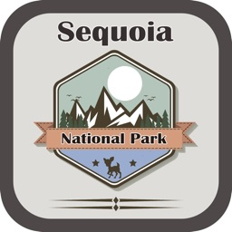 National Park In Sequoia