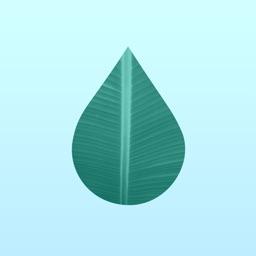Thirsty plants