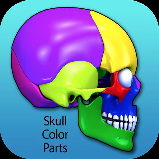 Skull Color Parts
