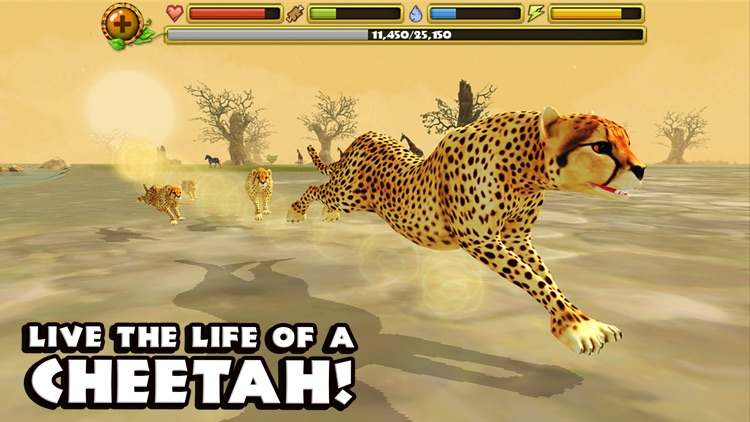 Cheetah Simulator screenshot-0