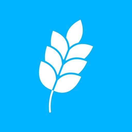 حسنات Hasanat