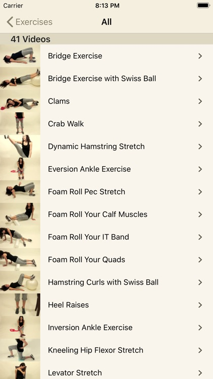 Pain Therapy: Exercise Videos