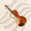小提琴演奏音乐合集