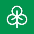 Cenibra icon