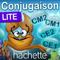 Revise Ta Conjugaison Lt Dans L App Store