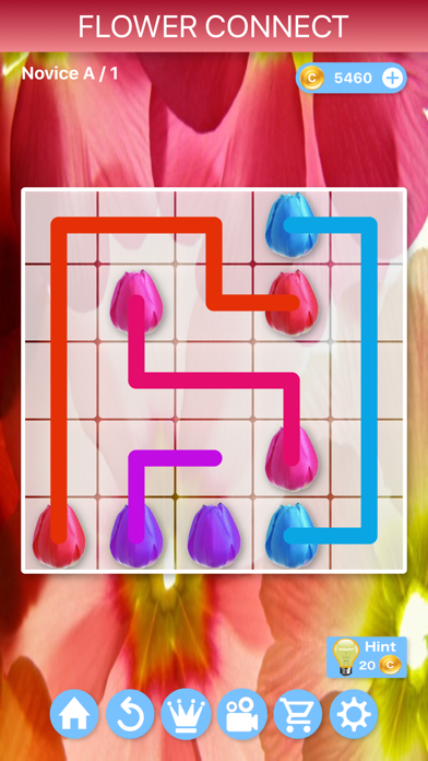Flower Connect - Puzzlesのおすすめ画像1