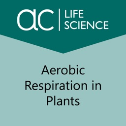 Aerobic Respiration in Plants