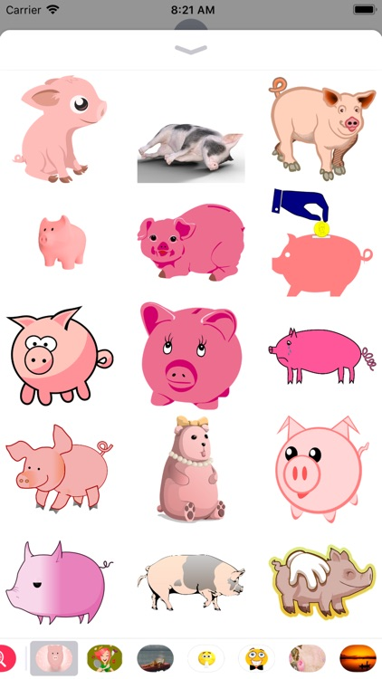 Pig Stickers - 2018