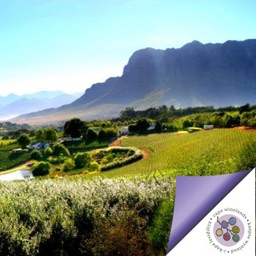 Cape Winelands Tourism