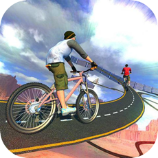 Activities of Bicycle In Traffic