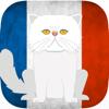 John Callaghan - CatsAndVerbs - French verbs! artwork