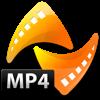 4Video MP4 Converter ->MOV/AVI - 4Videosoft Studio Cover Art