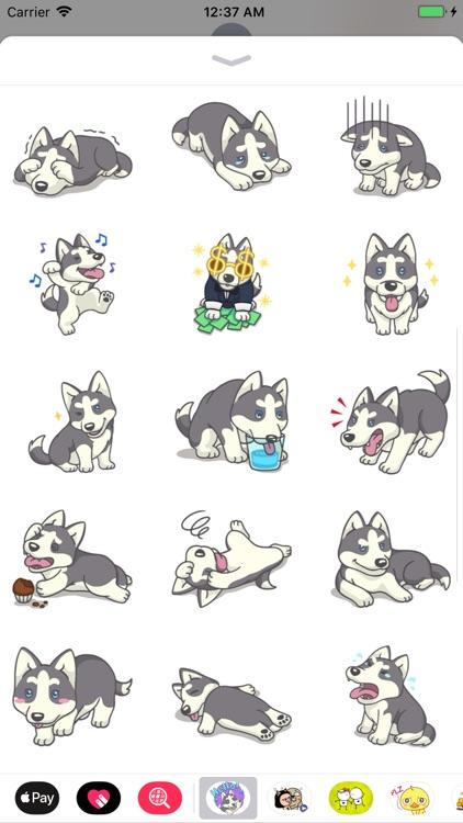 Husky Dog Stickers