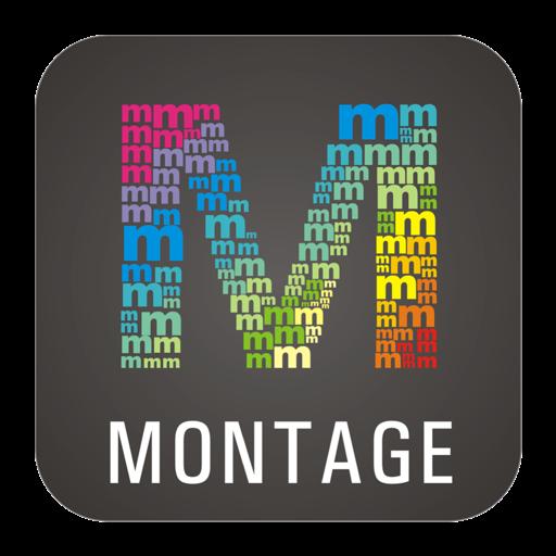 WidsMob Montage-Фото Мозаика