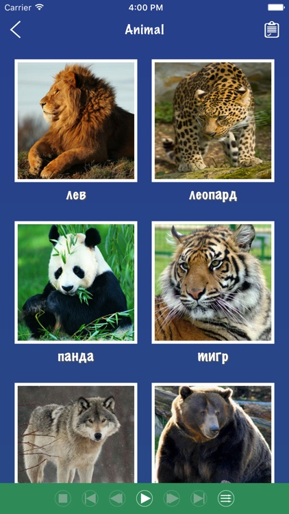 Russian Word Flashcards Learn