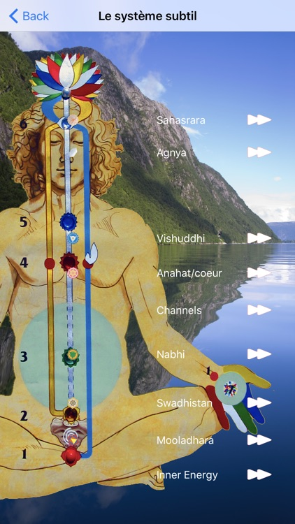 SahajaYoga-Meditation-français screenshot-2