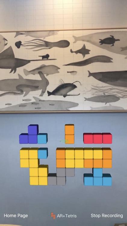 AR+Tetris