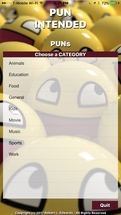 Image result for Pun Intended app