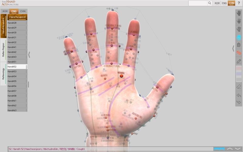 Hand Acupuncture скриншот программы 1