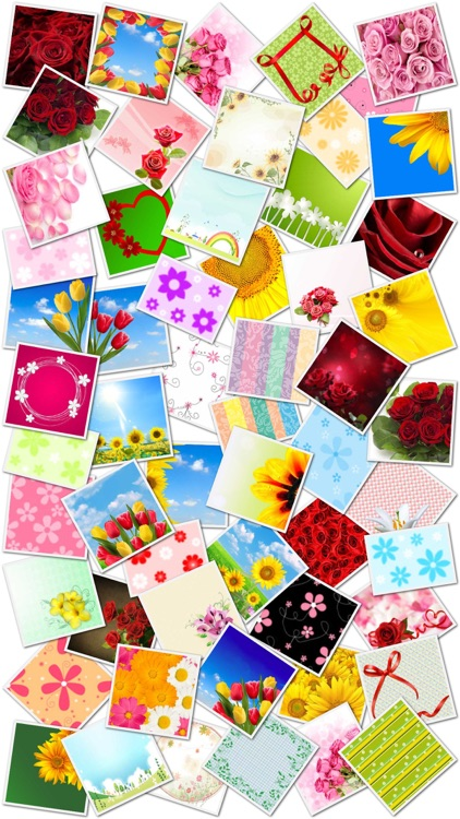 Flower Greeting Cards