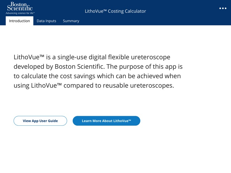 LithoVue™ Costing Calculator