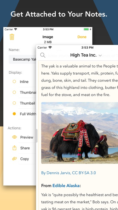 Agenda – A new take on notes app image