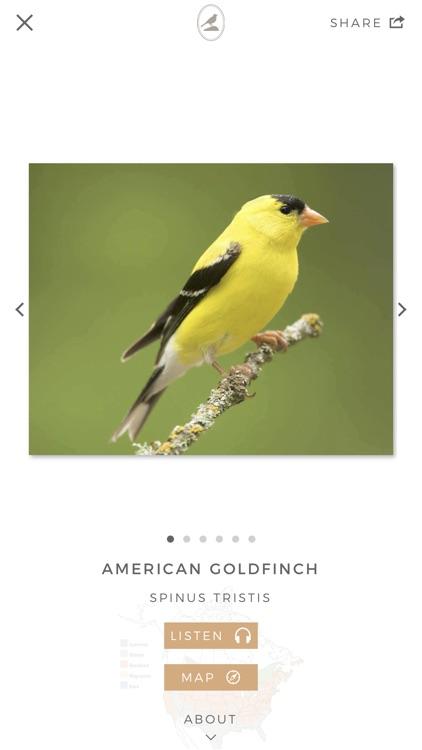 Fieldstone Guide: Birds