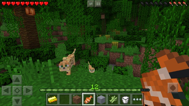 Minecraft En App Store