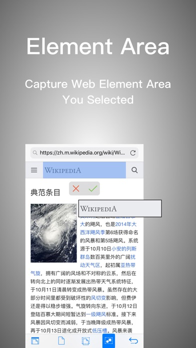 Webshot Preview 2