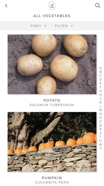 Fieldstone Guide: Vegetables screenshot-6