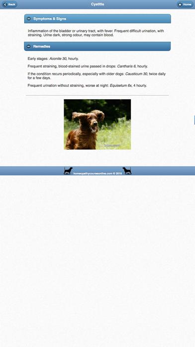 Homeopathy For Dogsのおすすめ画像3