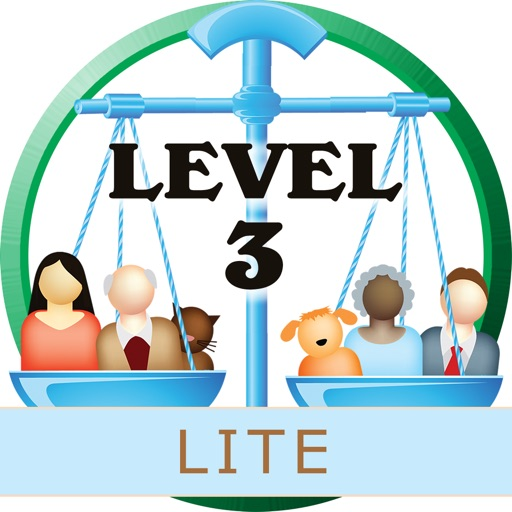 Balance Benders Level 3 (Lite)