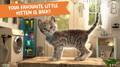 Little Kitten Adventures screenshot 1