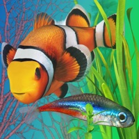 Codes for Fish Farm 2 Hack