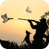 Duck Hunting Sport 3D
