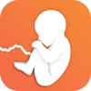 Pregnancy Mentor