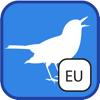 BirdSounds Europe