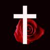Rosary Audio - Holy Rosary