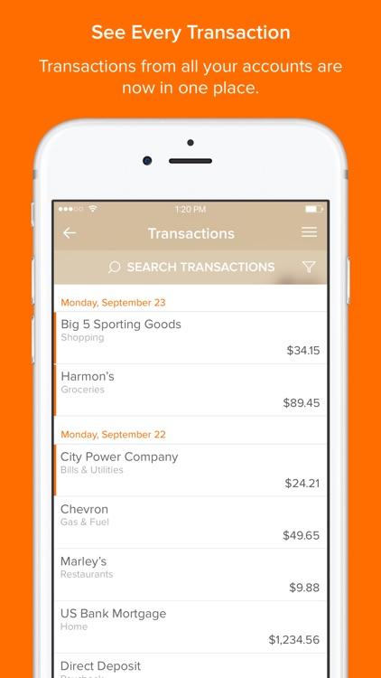 Sunbelt Money Manager screenshot-4