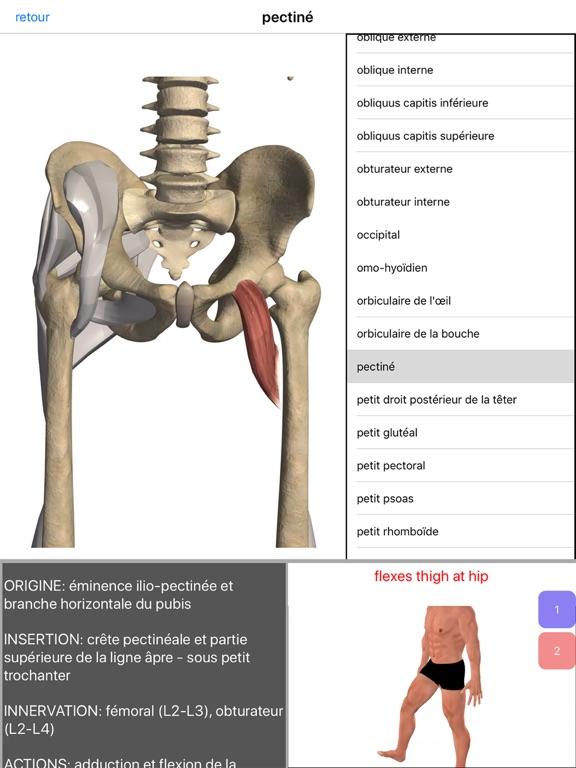 Anatomie Visuel | App Price Drops