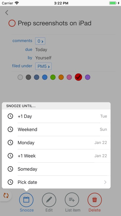 Pagico Mobile screenshot 3