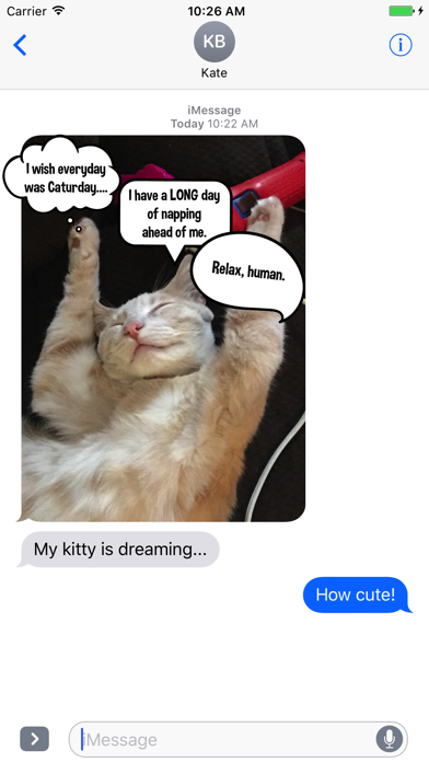 Kitty Thoughts Sticker Pack Lite screenshot two