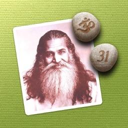 The Daily Guru 2