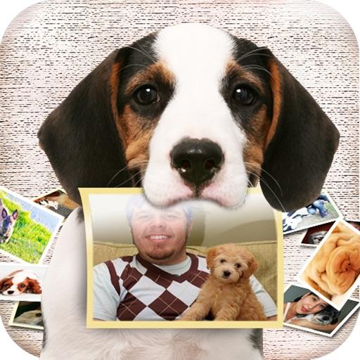 Dog Me iOS App