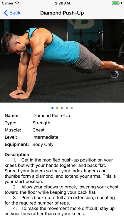 BodyWeight Gym Guide Pro screenshot-1