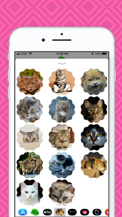 Cat Picture Stickers