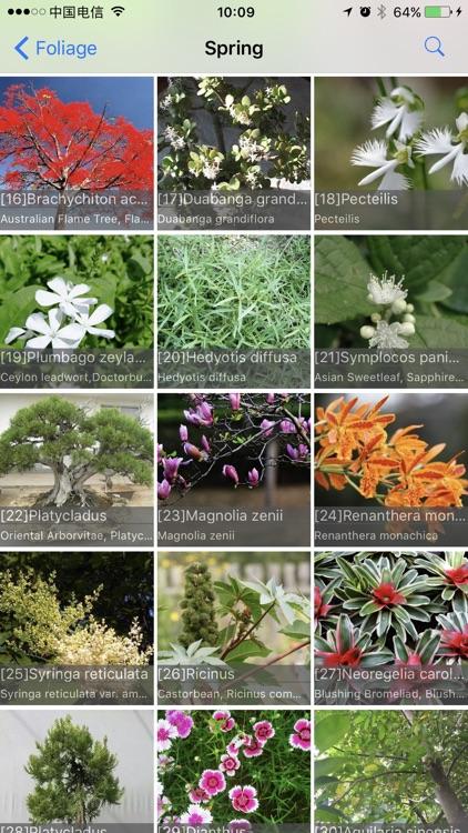 Foliage Plants screenshot-3