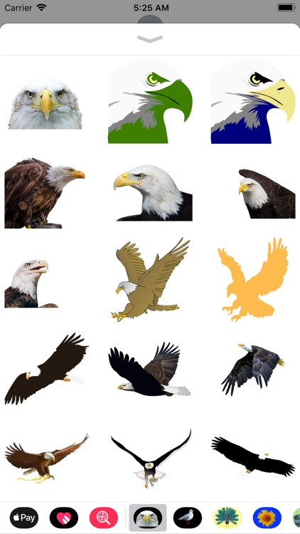 Exquisite Eagle Stickers