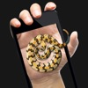 蛇在屏幕上恶作剧-整人屏幕整蛊游戏