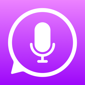 iTranslate Voice Reference app